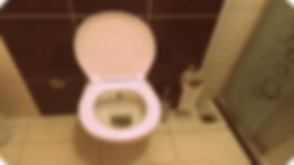 İstanbul Tuvalet Tıkanıklığı Açma